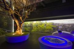 Exposition musée (crédit photo : Eric LAFARGUE)